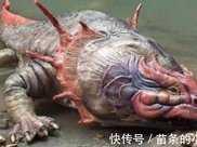 史前霸王蠑螈,曾在《鬼吹燈》中出現,撕碎鱷魚毫無壓力!