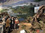 自貢市系列恐龍題材藝術活動來了!