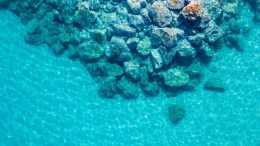 海底都有什麼 帶你看海底美景