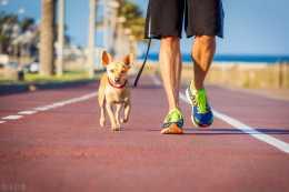 每天堅持走路的人,這5個好處,是別人體會不到的