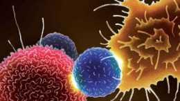 她去世70年,癌細胞卻依然活著,現已繁衍5000萬噸
